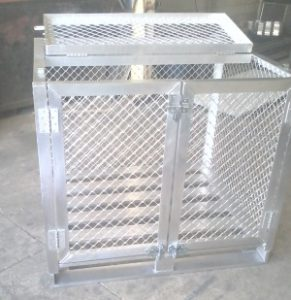 cage 4